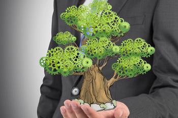 traducción jurídica del derecho ambiental